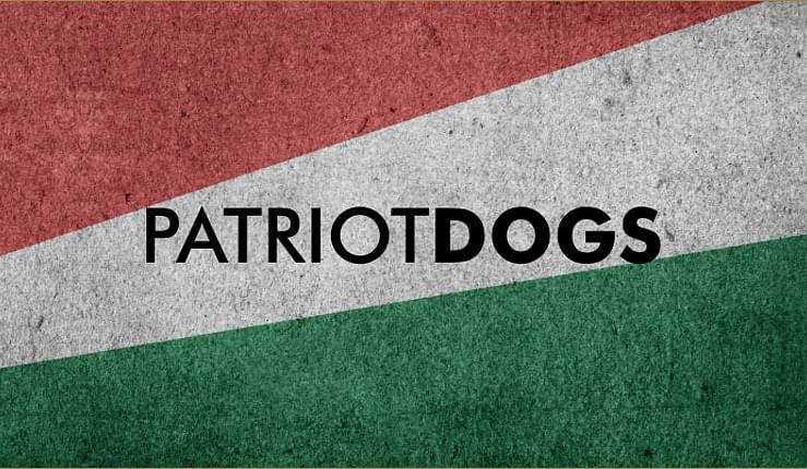 Help VOSD bring home 100 #PatriotDogs!