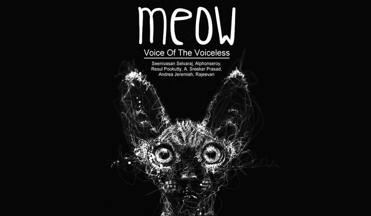 Meow! -A short film with a message for the society