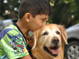Funds for Therapy Animals at Animal Angels who improve the quality of life of mentally and physically challenged through therapy